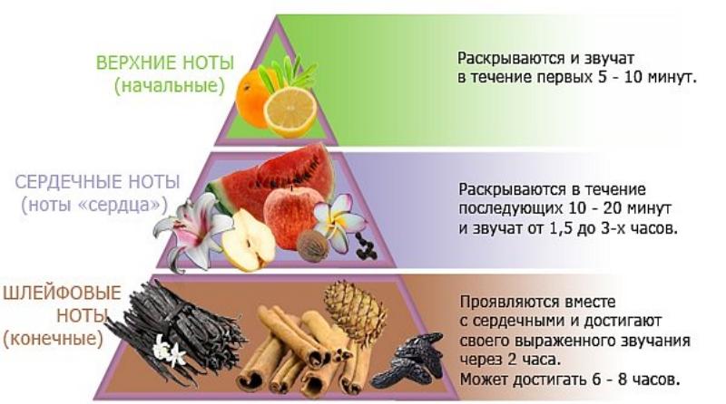 Парфюмерная пирамида
